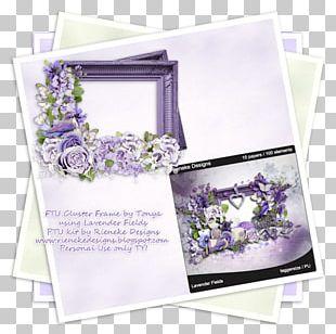 Floral Design Frames Petal PNG