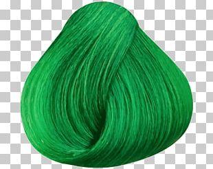 Green Hair Coloring Human Hair Color PNG