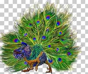 Bird Galliformes Peafowl Feather Tree PNG