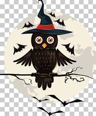 Owl Halloween Jack-o'-lantern PNG