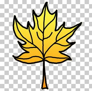 Autumn Leaf Color Open Yellow PNG