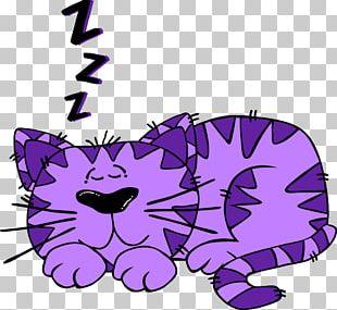 Siamese Cat Kitten Cartoon PNG