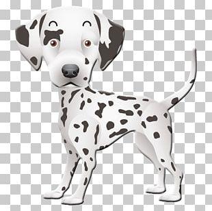 Dalmatian Dog Puppy Paper Postcard Birthday PNG