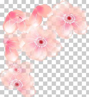 Floral Design Cut Flowers Blossom Petal PNG
