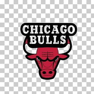 Chicago Bulls NBA Logo Decal PNG