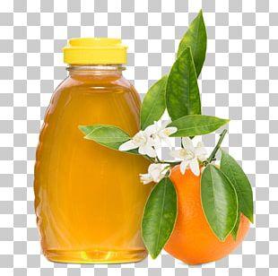Orange Blossom Orange Juice Flower PNG