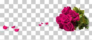 Champagne Garden Roses Beach Rose Petal Flower Bouquet PNG