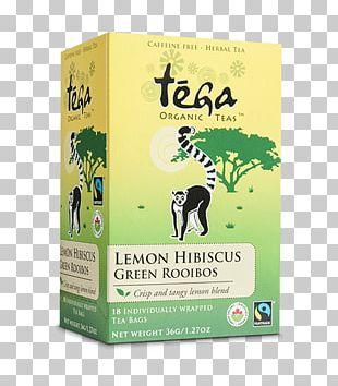 Earl Grey Tea Masala Chai Green Tea English Breakfast Tea PNG