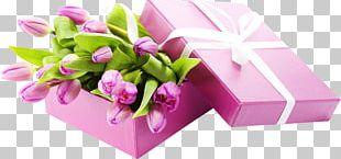 Flower Bouquet Desktop Tulipa Bakeri Lilac PNG