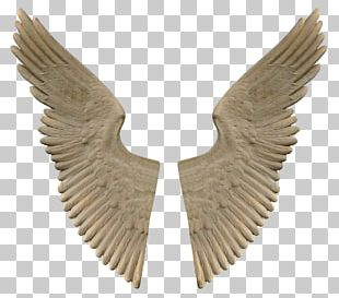 Stone Angel Wings PNG
