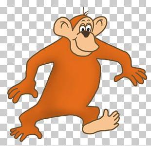 Bear Drawing Cartoon Monkey PNG