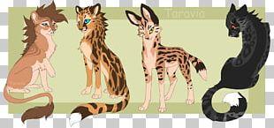 Big Cat Giraffe Kitten Felidae PNG
