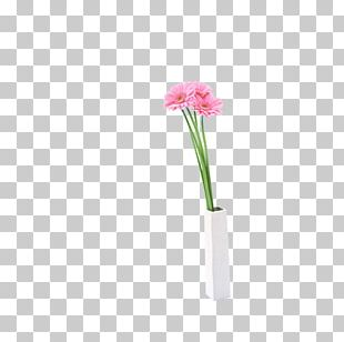 Cut Flowers Vase Plant Stem Petal PNG