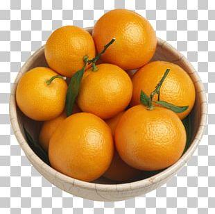 Bitter Orange Tangerine Mandarin Orange Fruit PNG
