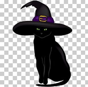Black Cat Kitten Halloween PNG