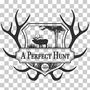 Elk White-tailed Deer Moose Antler PNG