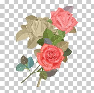 Wedding Invitation Beach Rose Flower Euclidean PNG