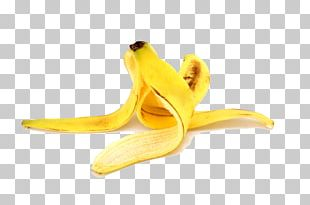 Banana Peel Banana Peel Fruit Food PNG