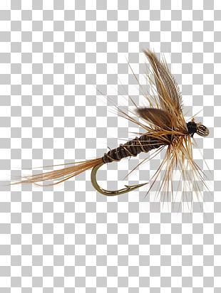Holly Flies Artificial Fly Fly Fishing Insect PNG