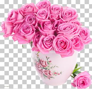 Pink Flowers Rose Color PNG