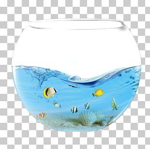 Aquarium Fish Water Icon PNG