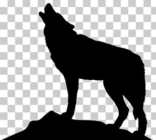 Dog Arctic Wolf Icon PNG