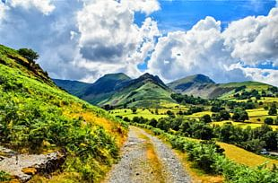 Hill Landscape PNG