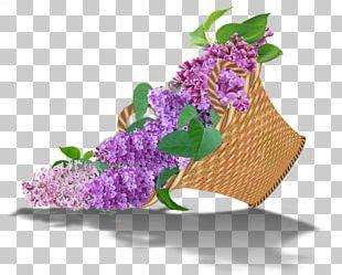 Floral Design Lilac Flower Bouquet Cut Flowers PNG