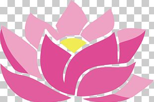 Floating Geometry Scatters Flowers PNG