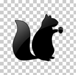 Red Squirrel Raccoon Recruitment Animal PNG