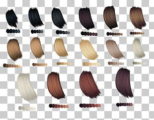 Hair Coloring Palette Human Hair Color PNG