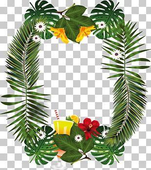 Leaf Palm Branch PNG