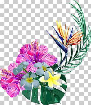 Floral Design Toucan Bird Plants PNG