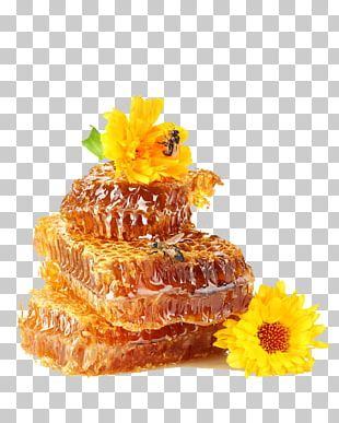 Honey Bee Honey Bee Diabetes Mellitus PNG