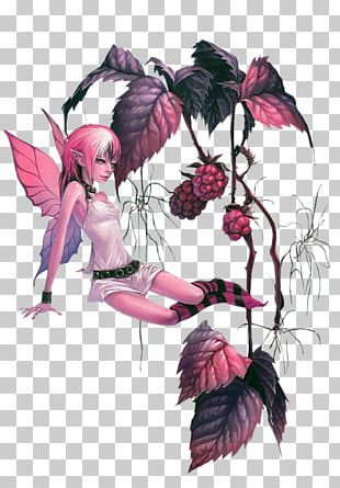 Fairy Elf Drawing Woman PNG