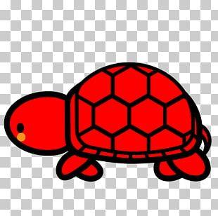 Loggerhead Sea Turtle Tortoise Reptile PNG