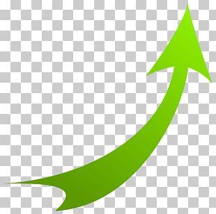 Green Leaf Font PNG