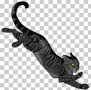 Forest Of Secrets Cat Whiskers Warriors Darkstripe PNG