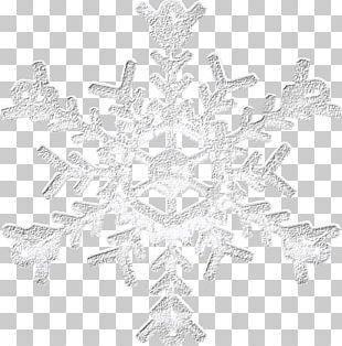 Silver Snowflake Icon PNG