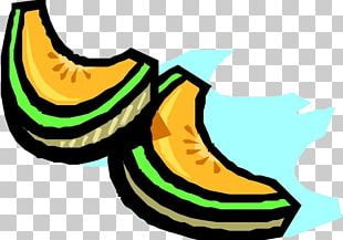 Cantaloupe Hami Melon PNG