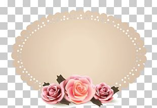 Frames Portable Network Graphics Graphics Graphic Design PNG