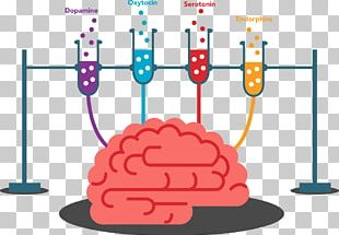 Cognitive Training Brain Physical Exercise Memory Human Body PNG