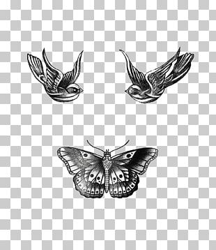 Tattoo Ink Drawing One Direction PNG