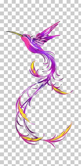 Hummingbird Tattoo Feather PNG
