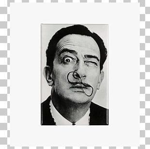 Salvador Dali Dali's Mustache Surrealism Photography Painting PNG