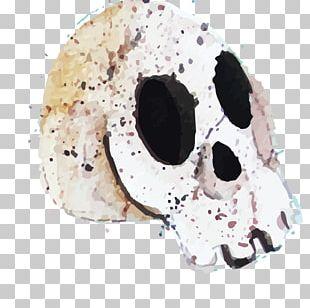 Calavera Halloween Skull Euclidean PNG