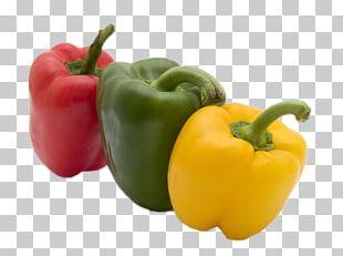 Bell Pepper Fruit Eating Vegetable Sweetness PNG