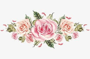 Hand-painted Pink Roses Cluster PNG