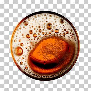 Beer Brewing Grains & Malts Ale Brewery Must PNG