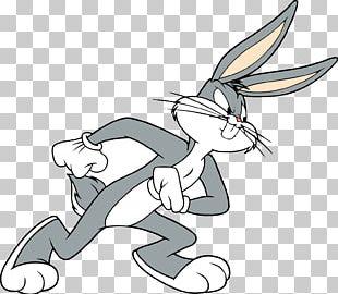 Bugs Bunny Daffy Duck Lola Bunny Tasmanian Devil Sylvester PNG